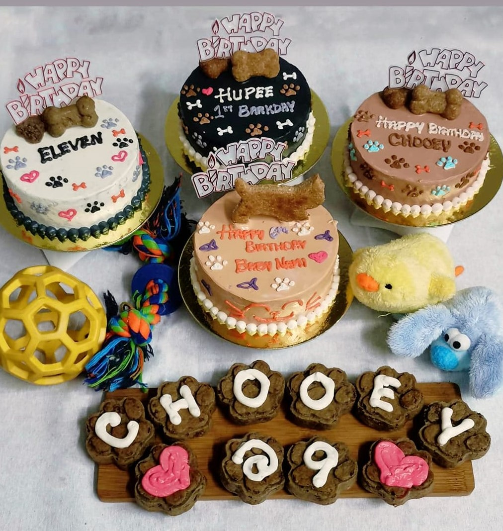 dog cakes, cupcakes and toys by Woof Cakes and Treats