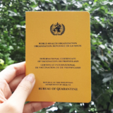 BOQ International Certificate of Vaccination